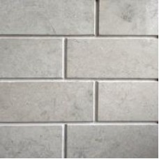 Limestone nummulitovy